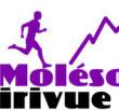 Course de montagne Neirivue - Le Moléson